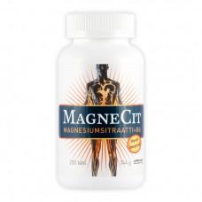 Magnecit магнецит магний витамин В6 купить
